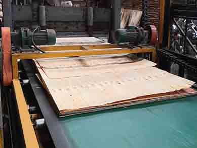 标准生产工艺