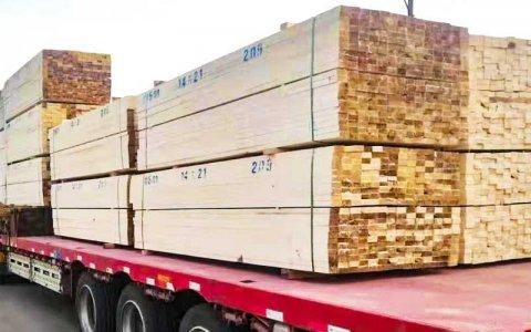 福建木方客户-白松木方2.9米