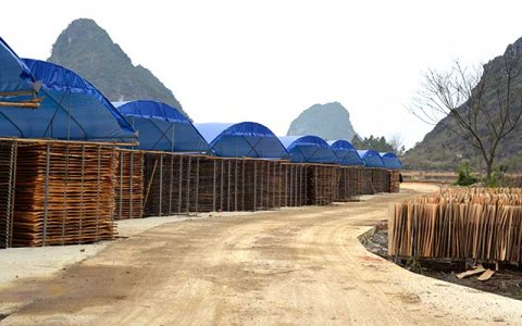广西哪里有大型生产建筑模板的厂呢?