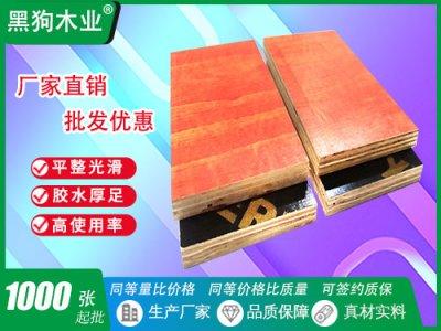 广西广东桥梁建筑木模板
