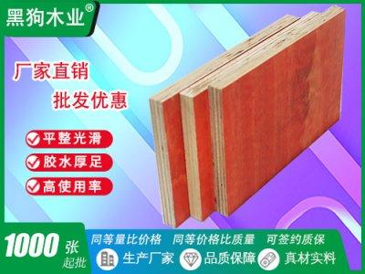 11层建筑木模板高层工地