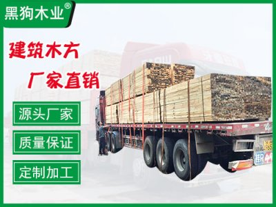 3x4木方工地用铁杉方木